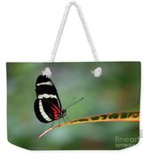 Passion-vine Butterfly 2017 Weekender Tote Bag