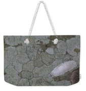 Patches Of Grey And Life Weekender Tote Bag