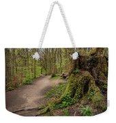 Path In Judy Woods Weekender Tote Bag