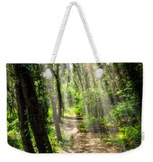 Path In Sunlit Forest Weekender Tote Bag by Elena Elisseeva