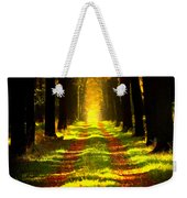Path In The Forest 715 - Painting Weekender Tote Bag