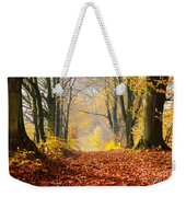 Path Of Red Leaves Towards Light Weekender Tote Bag