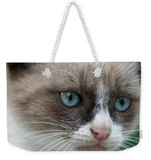 Pauls Little Cat Weekender Tote Bag