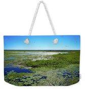 Paynes Prairie View Weekender Tote Bag