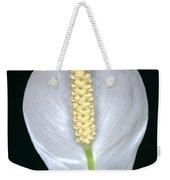 Peace Lily In Flower. Weekender Tote Bag