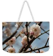 Peach Blossoms In Spring Weekender Tote Bag