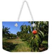 Peach Grove Weekender Tote Bag