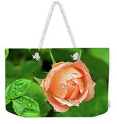 Peach Rose In The Rain Weekender Tote Bag
