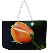 Peach Splendour Weekender Tote Bag