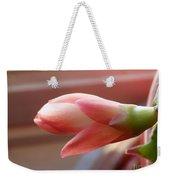 Peach Succulent Weekender Tote Bag
