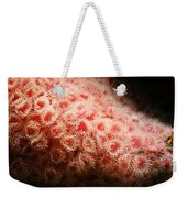 Peachy Urchins Weekender Tote Bag