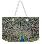 Peacock Display Weekender Tote Bag