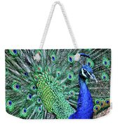 Peacock In A Oak Glen Autumn 2 Weekender Tote Bag