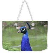 Peacock Portrait #3 Weekender Tote Bag