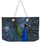 Peacock Splendor Weekender Tote Bag
