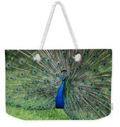 Peacocks Glory Weekender Tote Bag