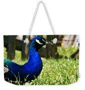 Peafowl Eye To Eye Weekender Tote Bag