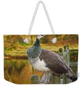 Peahen In Autumn Weekender Tote Bag