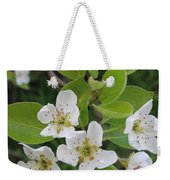 Pear Blossoms In Full Bloom Weekender Tote Bag