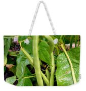 Peas Growing On The Farm 4 Weekender Tote Bag