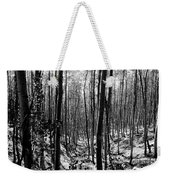 Pecos Wilderness Weekender Tote Bag