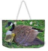 Peek-a-boo Goslings Weekender Tote Bag
