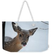 Peek A Doe Weekender Tote Bag
