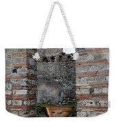 Peek Into The Past - Pompeii Weekender Tote Bag