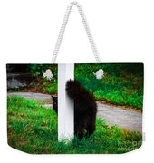 Peeking Kitty Weekender Tote Bag