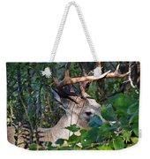 Peeking Through The Trees Weekender Tote Bag