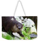 Peering Otter Weekender Tote Bag