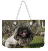 Pekingese Dog Weekender Tote Bag