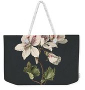 Pelargonium Album Bicolor, M De Gijselaar 1830 Weekender Tote Bag