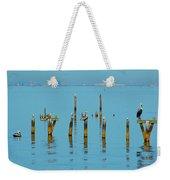 Pelican And Mobile Weekender Tote Bag