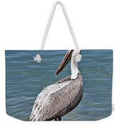 Pelican On Rock Weekender Tote Bag