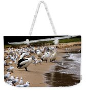 Pelicans At Pearl Beach 1.0 Weekender Tote Bag