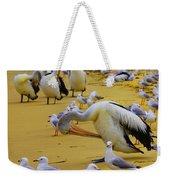 Pelicans At Pearl Beach 3.1 Weekender Tote Bag