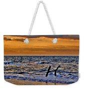 Pelicans Crusing The Coast Weekender Tote Bag