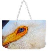 Pelican's Eye Weekender Tote Bag
