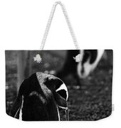 Penguins Under The Boardwalk Weekender Tote Bag