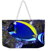 Blue Tang Fish  Weekender Tote Bag
