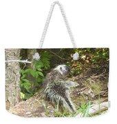 Pennsylvania Porcupine Weekender Tote Bag