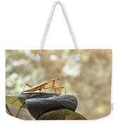 Pensive Mantis Weekender Tote Bag