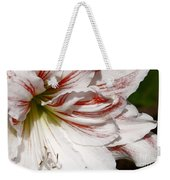 Peppermint Candy Weekender Tote Bag