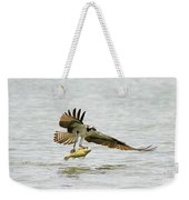 Perch On The Run 2 Weekender Tote Bag