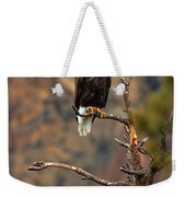 Perched At Smith Rock Weekender Tote Bag