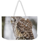 Perched Barred Owl Weekender Tote Bag