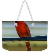 Perched Cardinal Weekender Tote Bag