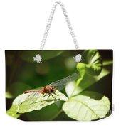 Perched Dragonfly Weekender Tote Bag