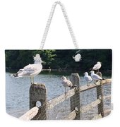 Perched Gulls Weekender Tote Bag
